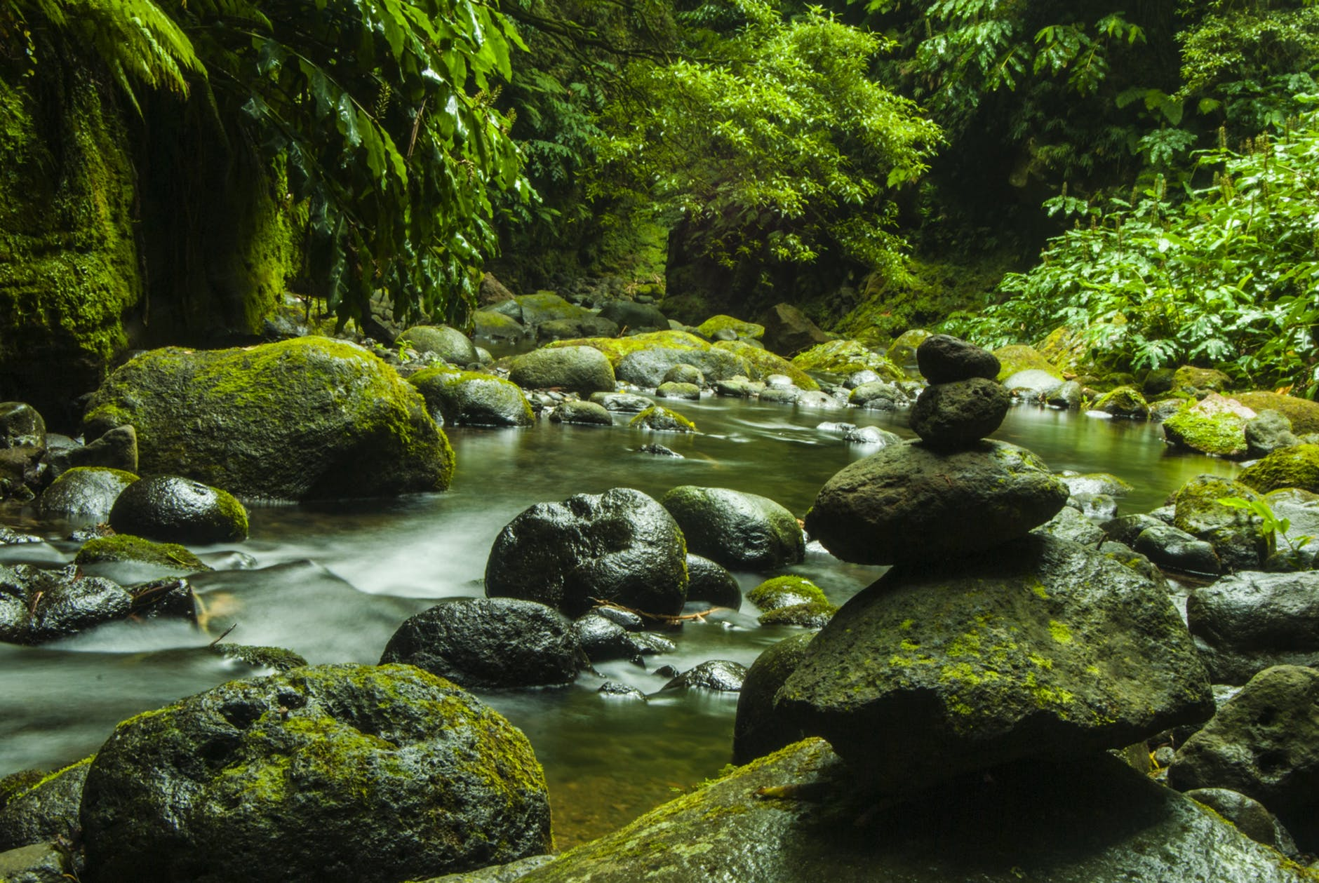 boulder cascade creek environment
